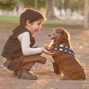 Cosplay - Garotinhos e Dachshund como Han Solo, Darth Vader e Chewbacca