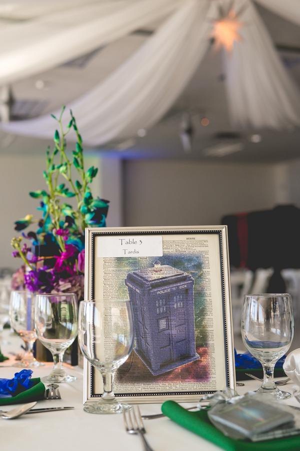 Casamento Doctor Who