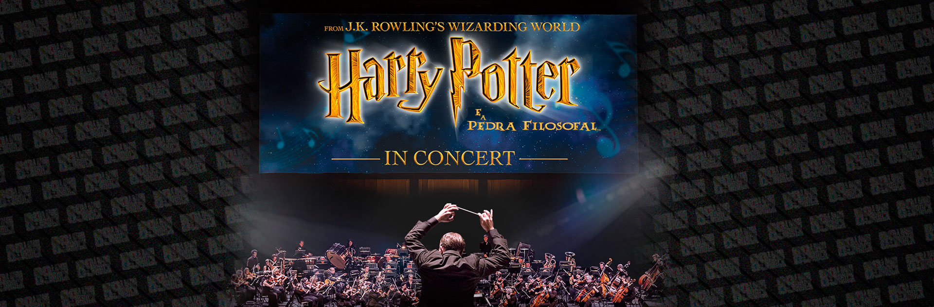 Exibição de Harry Potter com orquestra ao vivo chega ao Brasil em março