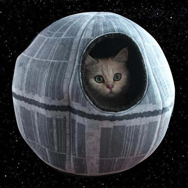 Star Wars: Caminha de Estrela da Morte para seu pet tirar uma soneca