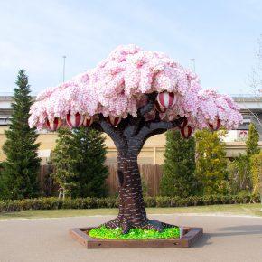 Legoland Japão: árvore de Cerejeira com tijolos de Lego