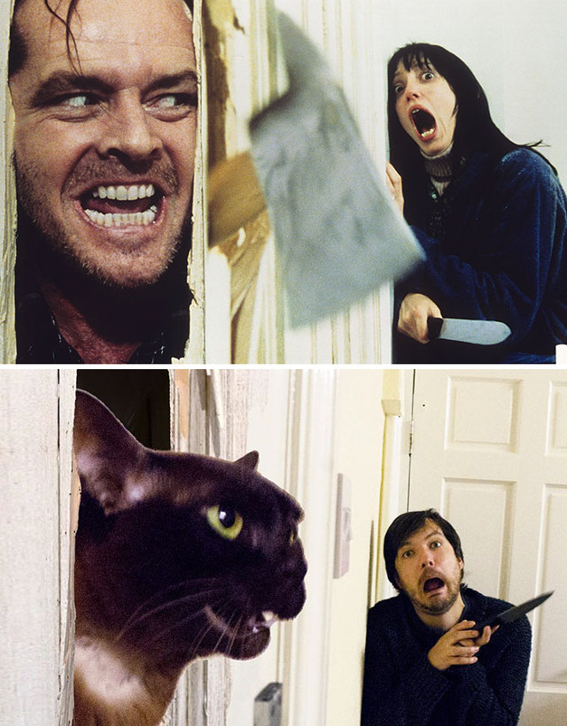 Casal recria cena de filmes com seus gatos